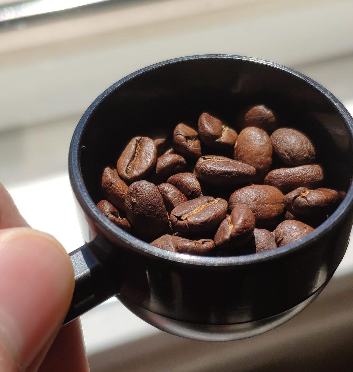 coffee, bean, colombia, Kolumbien, Arhuaco, kaffee